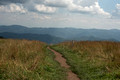 Max Patch - at Appalachian Trail - North Carolina